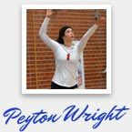 professional volleyball workout program