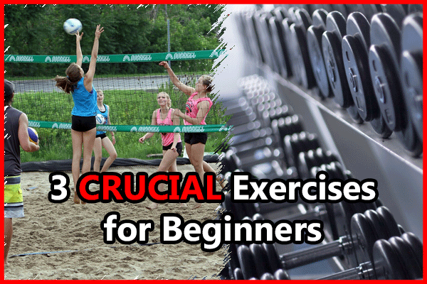beginner-exercises