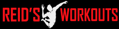 Reid's Volleyball Workouts logo